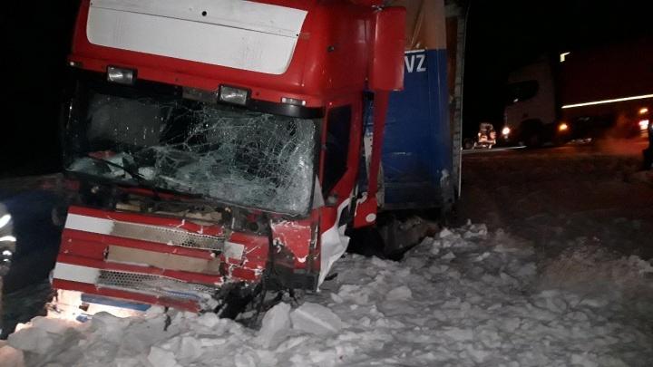 На трассе в Курганской области Lexus попал под фуру: водитель погиб на месте