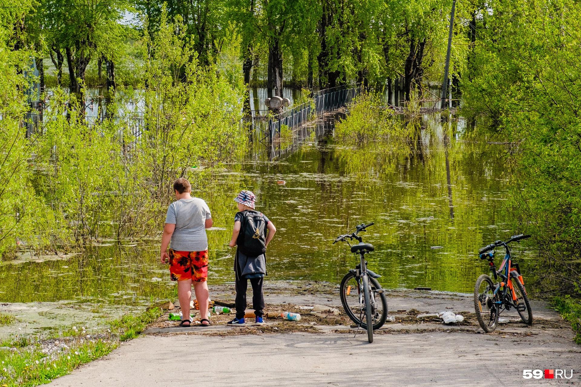 Кажется, на велосипеде здесь не проедешь