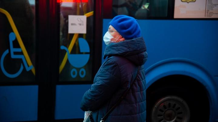Семь маршрутов на отдыхе: как в Архангельске будут ходить автобусы с 1 по 10 января