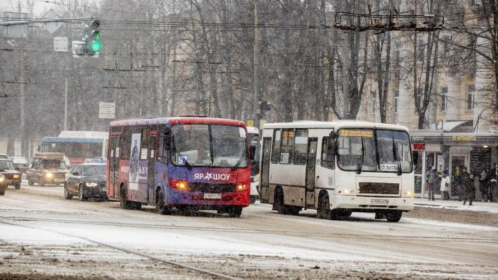 Власти рассказали, какие автобусы должны ездить по Ярославлю после транспортной реформы