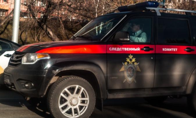 В одном из домов в Новосибирской области нашли тело женщины — СК возбудил дело