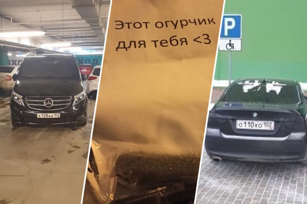 Правительственная машина, овощное послание и мажор на инвалидном месте — всё это становится, увы, нормой парковки