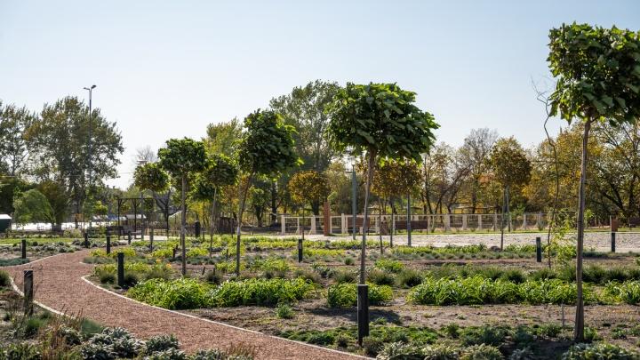 Лавки-качели и деревянные кони: как выглядит строящийся парк «Ефремовский»