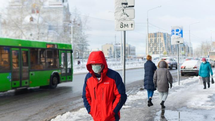 Сколько жителей Архангельской области переболело коронавирусом? Опрос 29.RU