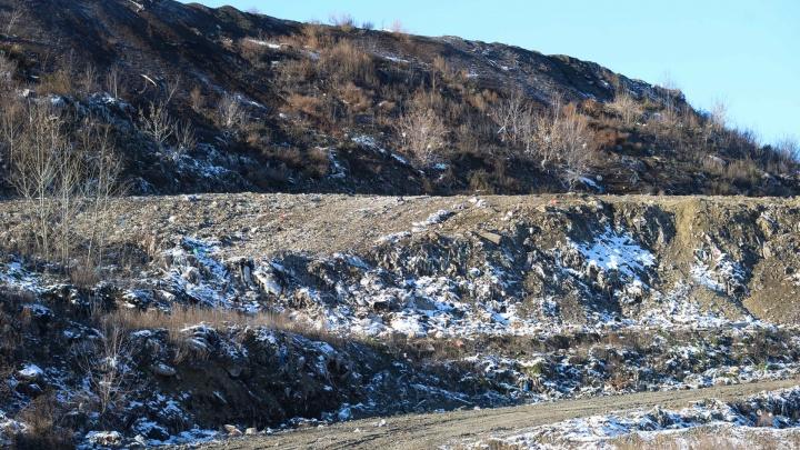 На месте Широкореченской свалки появится гигантский зеленый холм