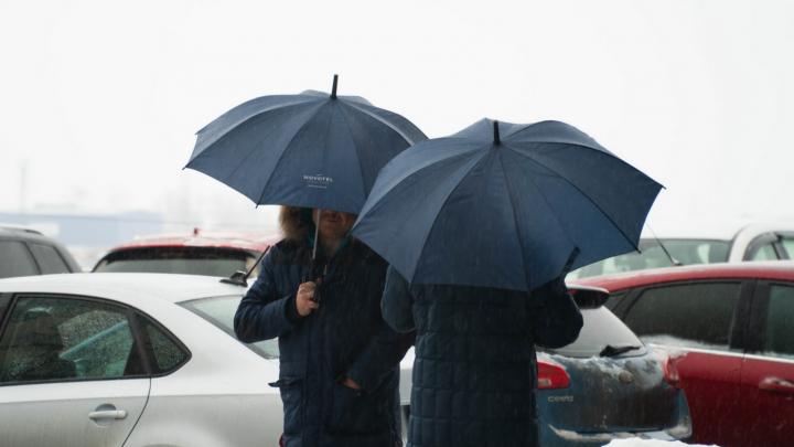 В Архангельскую область пришли ветер, дожди и грозы