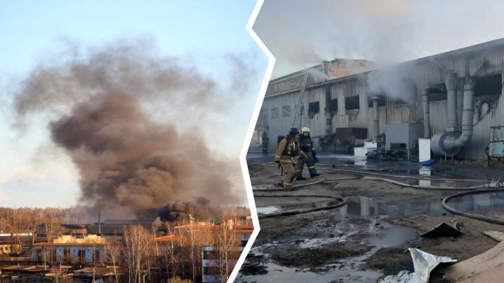 «Увидели и ужаснулись»: в Ярославской области сгорел цех полиграфкомбината. Видео