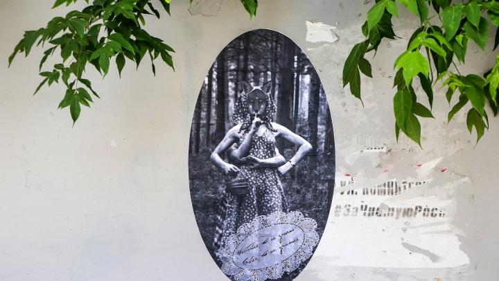«Бойся, что не учишься». В Нижнем Новгороде появился новый «лисий» стрит-арт