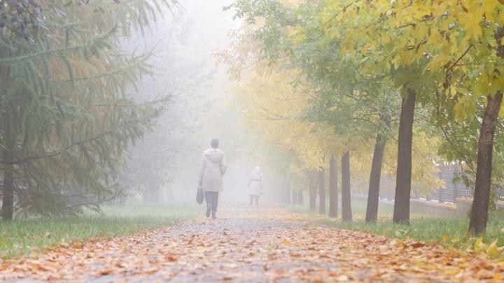 «Привет от бабьего лета»: синоптики рассказали, как долго в Челябинске задержится туман