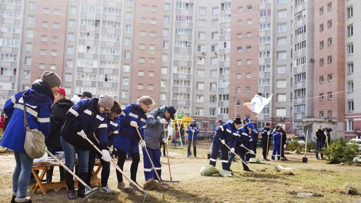 Мусор на улице или здоровье людей: что будет в Ярославле с весенними субботниками в этом году