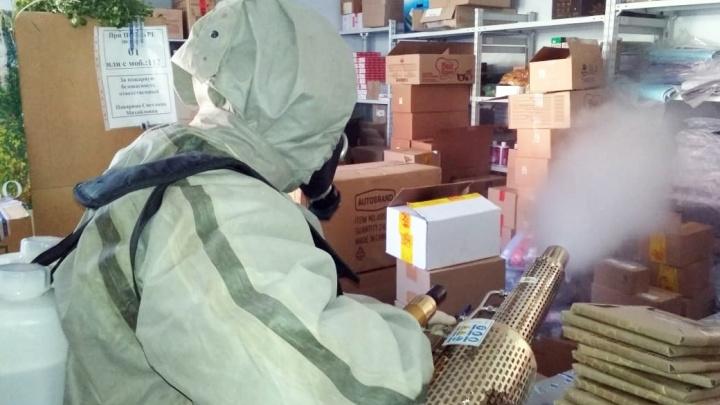 В Башкирии для обработки помещений используют необычное оборудование