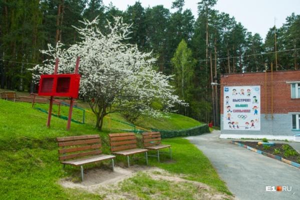 Детские загородные лагеря готовы к тому, чтобы открыться в начале июня