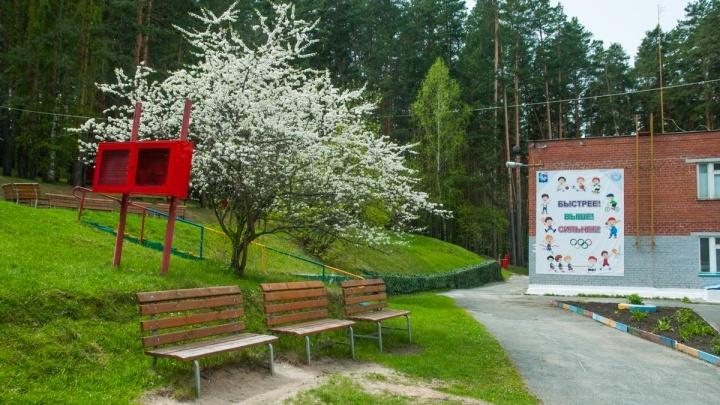 Загородные летние лагеря в Свердловской области готовят к открытию, несмотря на коронавирус