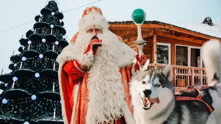 Пожить в гнезде, погостить у Деда Мороза и покататься на хаски: семь способов провести праздники интересно