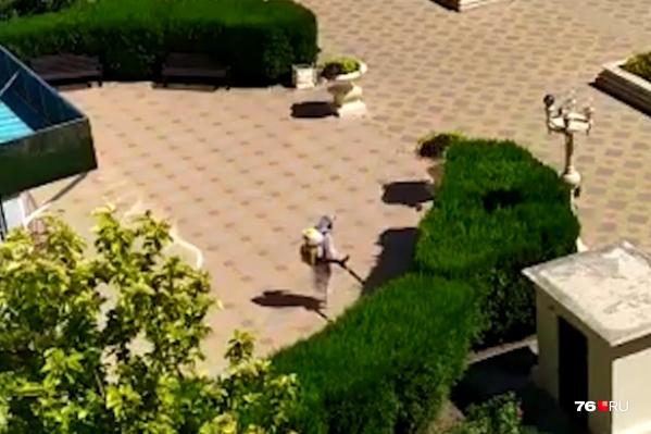 Люди в противочумных костюмах появляются на территории отеля каждый день