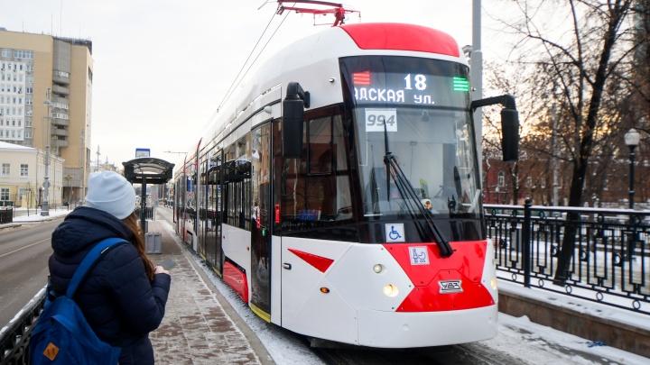 Мэр назвал сроки строительства трамвайной ветки в Академический