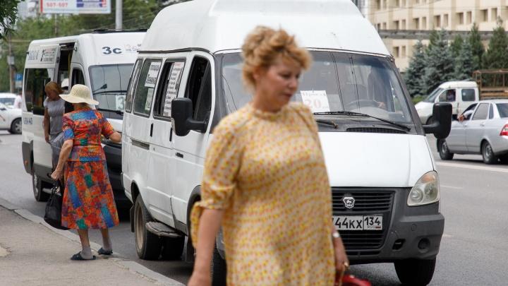 В Волгограде ищут перевозчика на новый городской маршрут