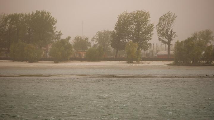 Пять регионов юга России накроет пыльная буря — в том числе и Ростовскую область