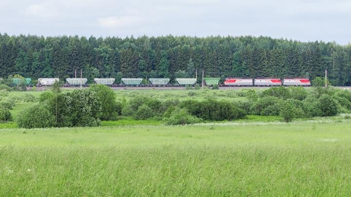 Дистанционное оформление грузовых отправок на СЖД достигло почти 90%