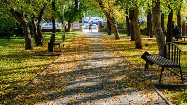 Бабье лето задержится. Синоптики рассказали, какая погода будет в Прикамье в начале октября