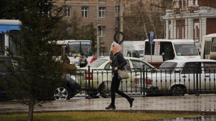 Новая неделя в Омске и области начнется с дождей