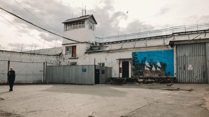 Жительница Ишима, накопившая миллионный долг по алиментам, отправилась в колонию-поселение