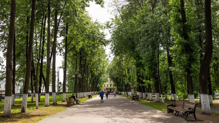 Свалки и смог или зелень и чистое небо: в каком виде Ярославль достанется будущим поколениям