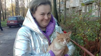 «Любит его больше всех»: в Ярославле кот на трамвае по всему городу разыскивал своего хозяина