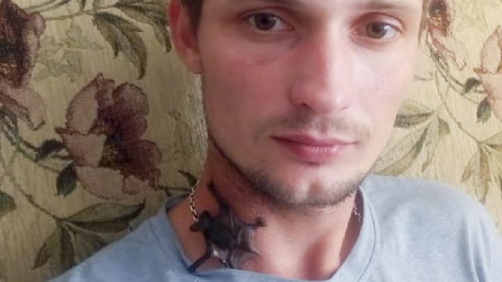 «Пришлось изменить свою жизнь»: житель Рыбинска приютил дома летучего мышонка