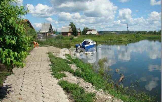 Новосибирцы сдают в аренду дачу с причалом для катера и личным пляжем за 300 тысяч. Смотрим вместе
