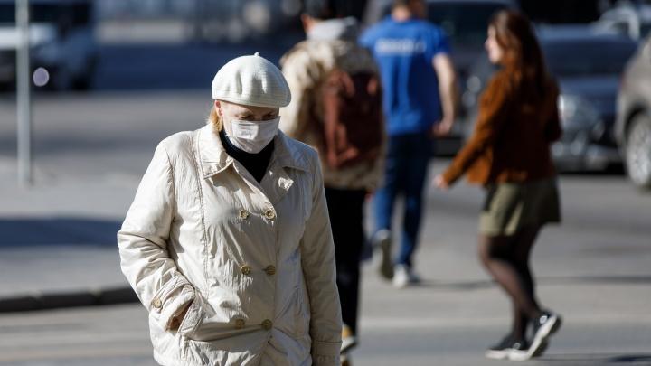 Коронавирус в Волгограде: новости первого дня в «режиме тишины»
