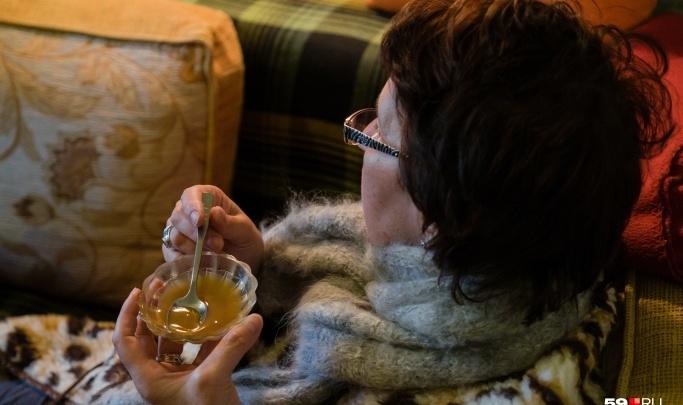 Женщина выманила у одиноких пенсионеров полмиллиона, прикидываясь владелицей пасеки