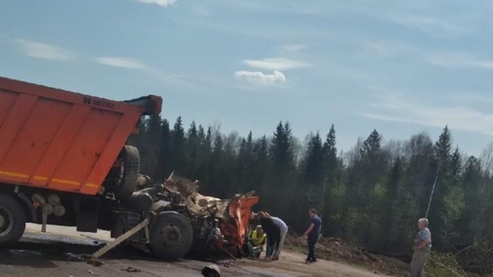 В Прикамье в ДТП попали три грузовика: один человек погиб