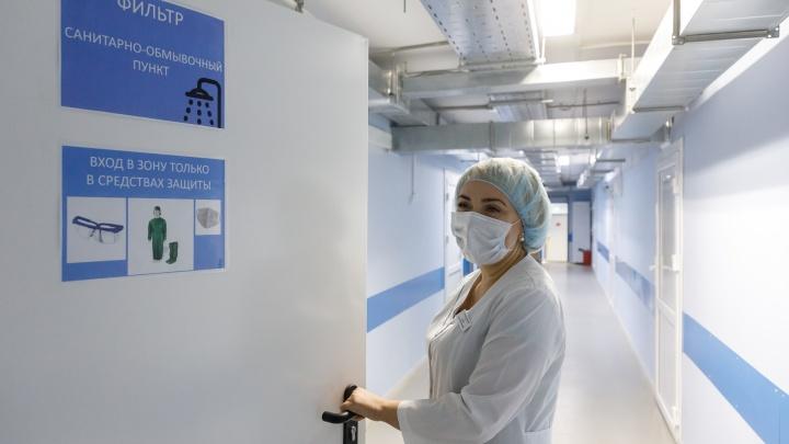 Вспышка в Палласовке: с коронавирусом пытаются справиться 3739 волгоградцев