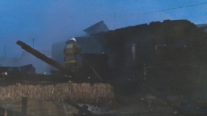 В Котласском районе полностью сгорел нежилой дом, который планировали заселить