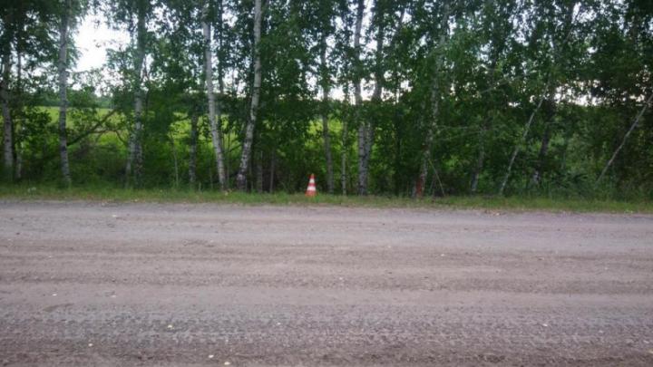 Два подростка съехали в кювет на мотоцикле под Новосибирском — один из них скончался