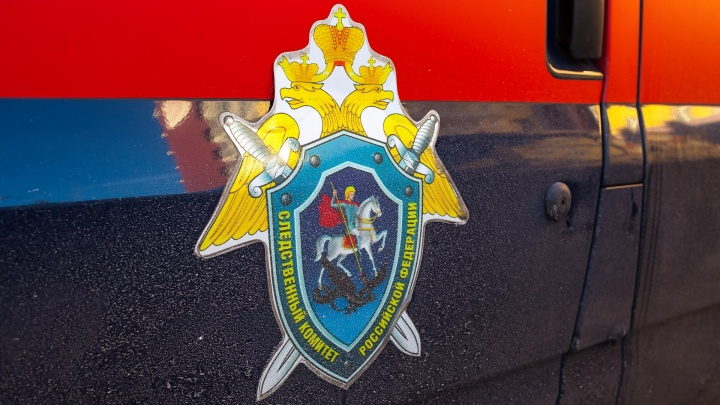 Кемеровчанку отправили в психбольницу за убийство 3-месячной дочери