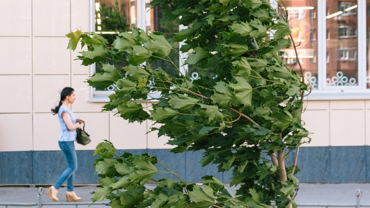 На Самарскую область обрушится ураганный ветер с грозой