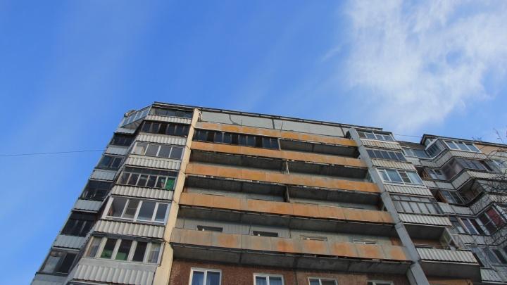 Помогала кошке спуститься с карниза: в Архангельске из окна второго этажа выпала семилетняя девочка
