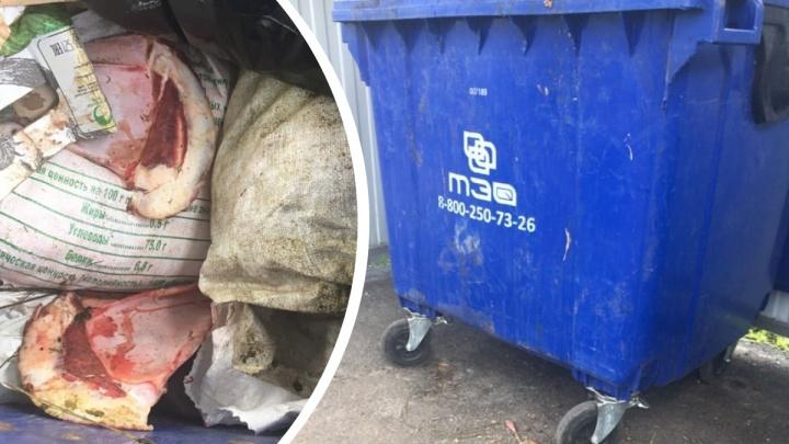 Смрад и переполненные контейнеры. В Тюмени неизвестные вывозят потроха и шкуры баранов на мусорку