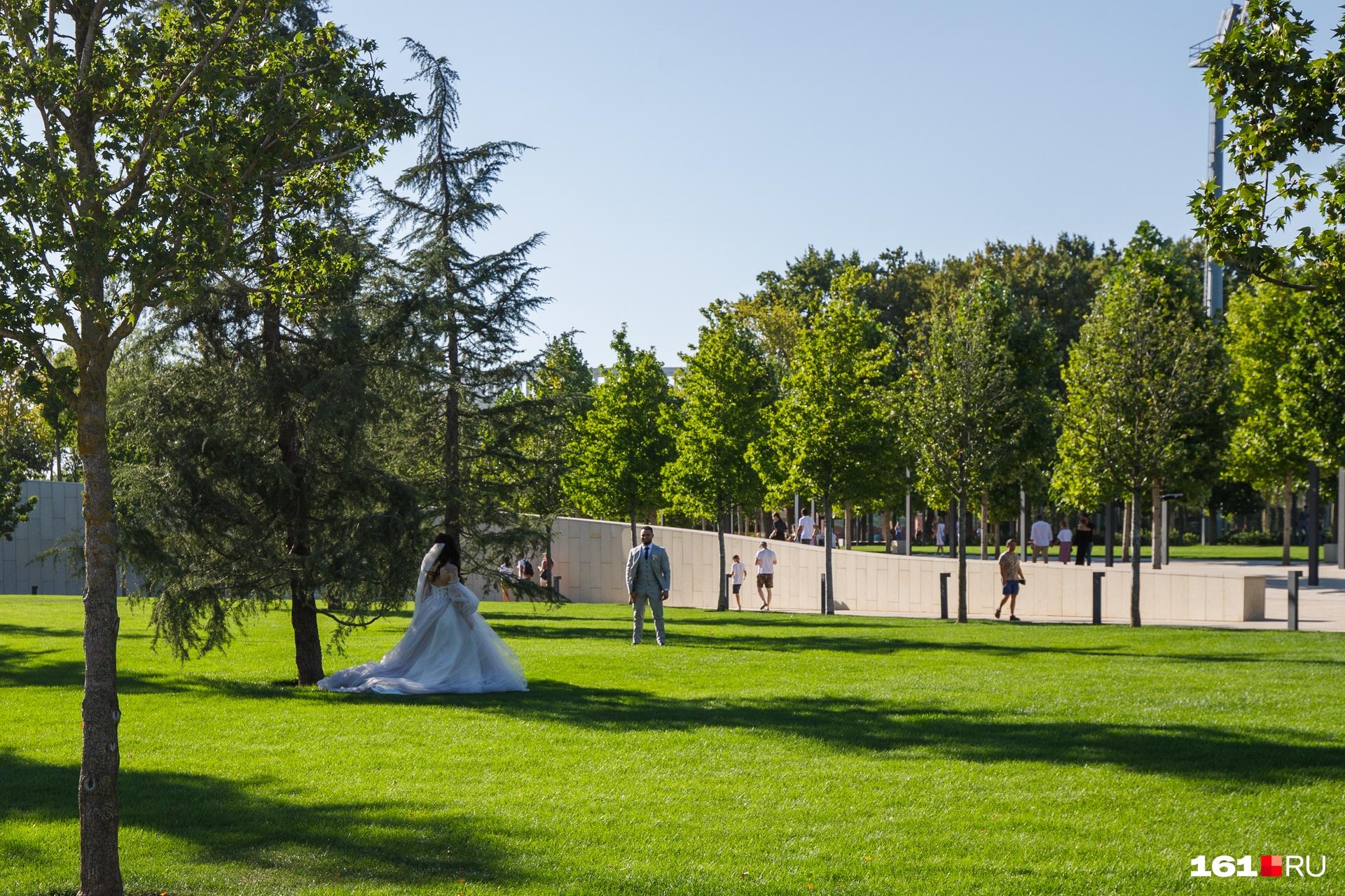 В парке молодожены проводят свадебные фотосессии