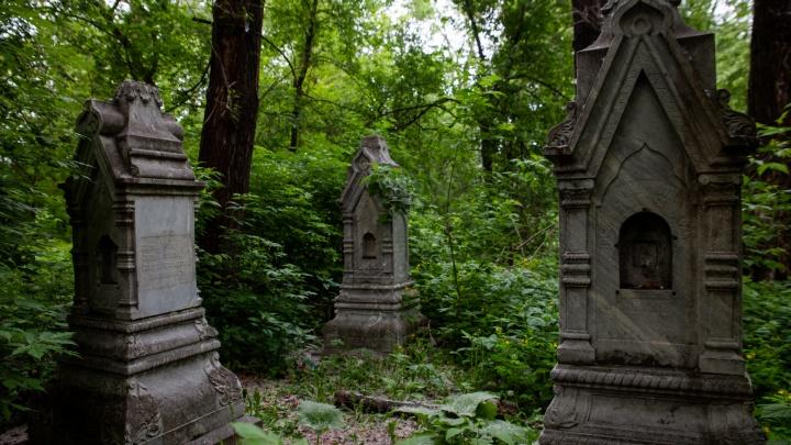 Исторический парк, прогулочная зона или место памяти усопших? Что делать с Текутьевским кладбищем