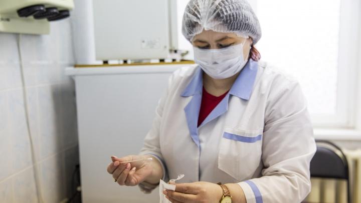 Тест на коронавирус за два дня: в Ярославле анализы стали брать медики частных клиник