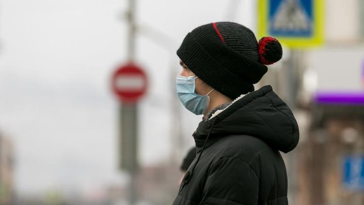 В крае за сутки зарегистрировано 440 больных коронавирусом
