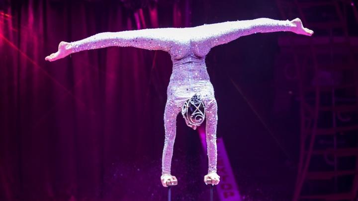 «Цирк дю Солей» выступил онлайн. Смотрите шоу на 161.RU!