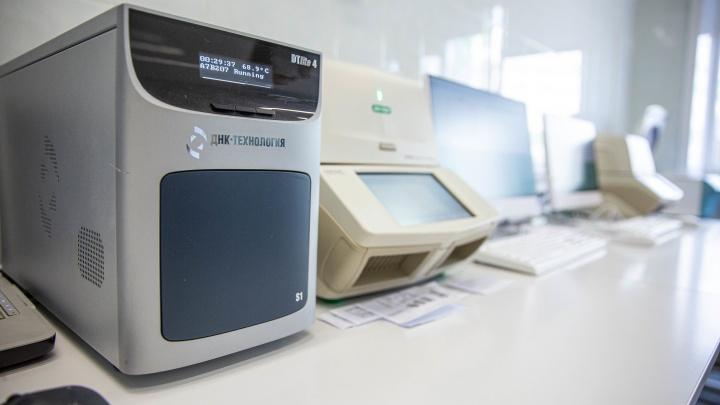 В Новосибирск привезли новое оборудование для тестов на коронавирус — 5снимков из ПЦР-лаборатории