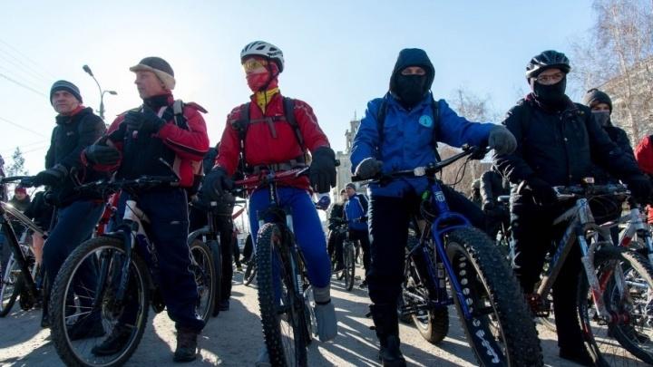 «В условиях коронавируса»: волгоградцев призвали сесть на велосипеды и отказаться от машин