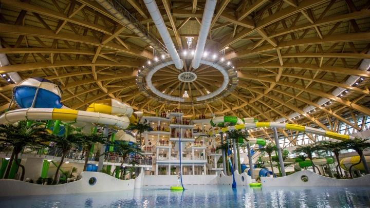 Владельца новосибирского аквапарка признали банкротом. Как это отразится на посетителях