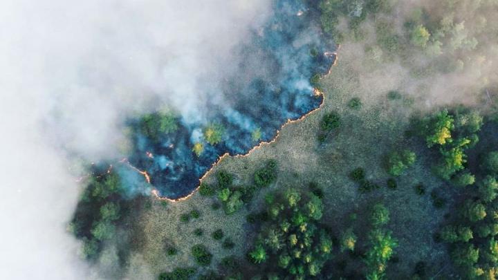 Волонтеров просят помочь в тушении пожара в Башкирском заповеднике