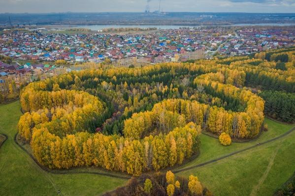 Лесопарк имениСинягина стал героем новой фотосессииАлександра Антощенко